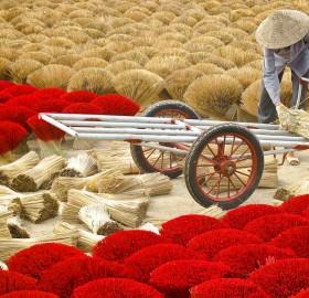 colors of vietnam
