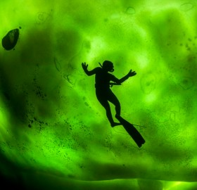 northern lights through ice in freezing waters