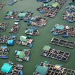 floating market, hong kong