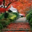 garden stairs in kyoto, japan