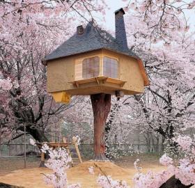 tree house, japan
