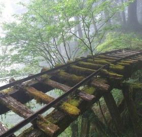 abandoned rail bridge in taiwan