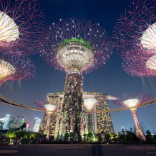 solar powered supertrees, singapore