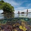 crystal clear water of papua new guinea
