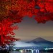 autumn in japan, mount fuji