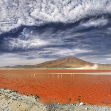 laguna colorada, salt lake, bolivia
