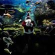 underwater santa