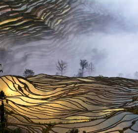 sunset over terrace fields, china