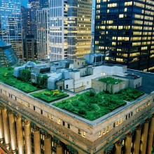 chicago city hall`s green roof