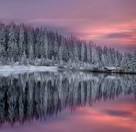 winter in rhodope mountains, bulgaria