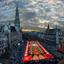 biggest flower carpet in the world, brussels
