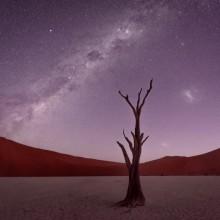starry sky over namib desert