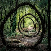 Nature Inspired Sculptures In Deep Forest