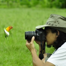 Bird Face To Face With Photographer