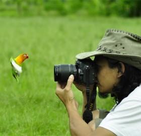 Bird Face To Face With Photographer