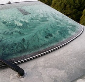 Windshield Frost Art