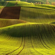 Curves Of Moravia Hills, Czech Republic