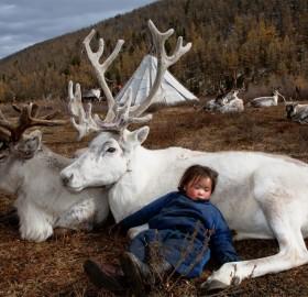 Living With Raindeers, Mongolia