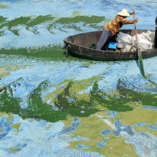 Fishermen Row A Boat In Chaohu Lake, China