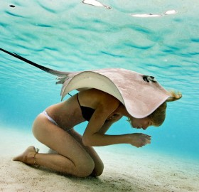 Stingray And A Girl