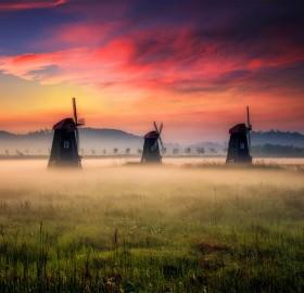 Morning Mist in Holland