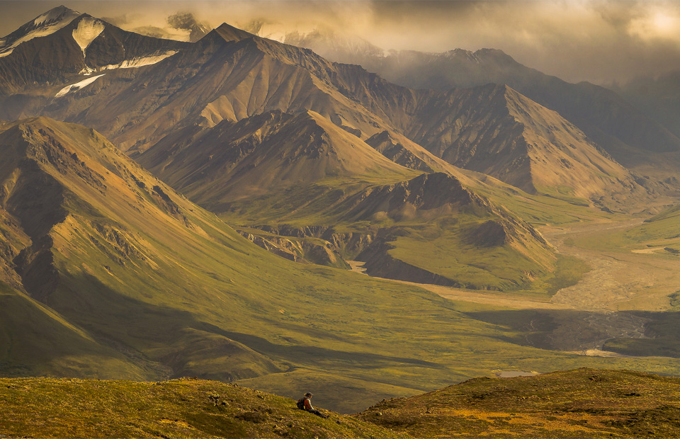 stunning denali national park, alaska