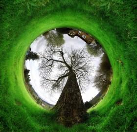 360 degree reverse panorama