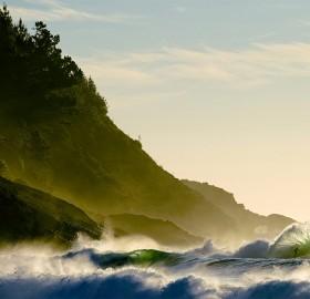 find surfer