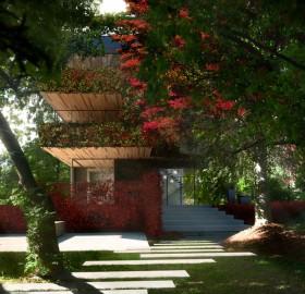 inspiring green backyard