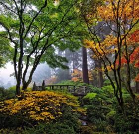bridge in japanese garden, portland