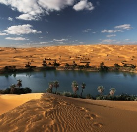 desert oasis, libya