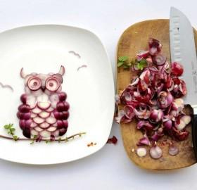 onion owl