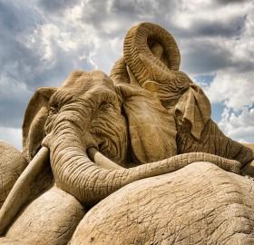 amazing elephant sand sculpture