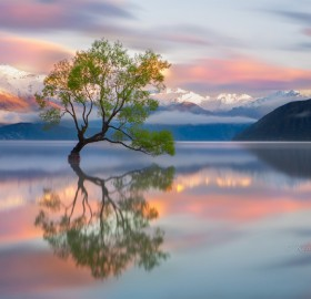 colors of wanaka, new zealand