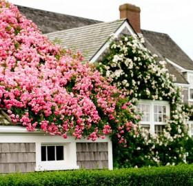 nantucket island house