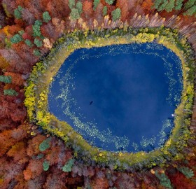 view from above on a small lake inside forest, poland