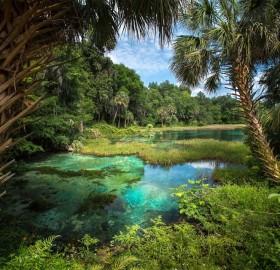 natural freshwater springs, florida