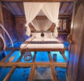amazing room with glass floor shows underwater world