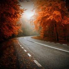 autumn in transylvania, romania