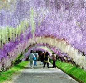 kitakyushu park, japan