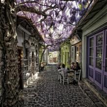 Magical Flower Street In Greece