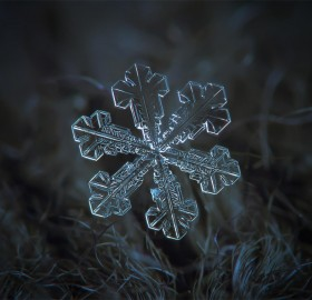 These Amazing Macro Photos of Snowflakes Show Nature's Perfect Design