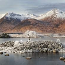 Winter In Rannoch Moor, Scotland