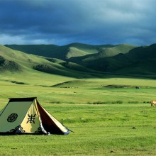 Mongolian-Manchurian Grassland