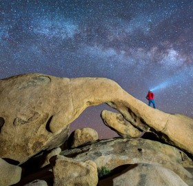 Milky Way Over Joshua Tree National Park