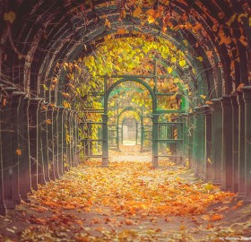 A Garden Tunnel In Peterhof Palace, St Petersburg, Russia