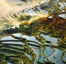 China's Rice Field Terraces